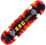 80% Discount on Skateboard 31''x 8'' with 7 Lays Maple Deck for Adults, Teens, Youth & Kids